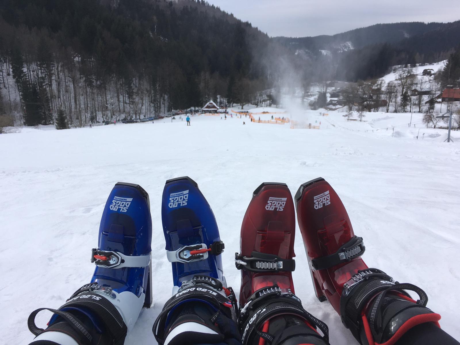 Sněžné brusle Sled dogs. Komu to moc nejde na lyžích, zamiluje si je.